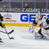 Golden Knights Ride Four-Goal Third Period to Victory Over Arizona
